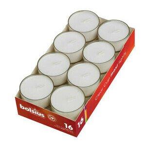 Maxi-Teelicht 16 Stück Bolsius