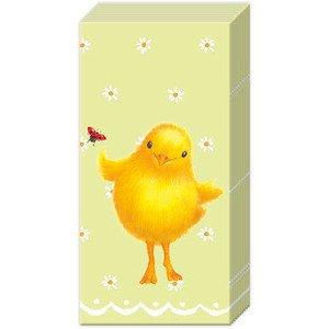 Papiertaschentücher Sweety mint IHR