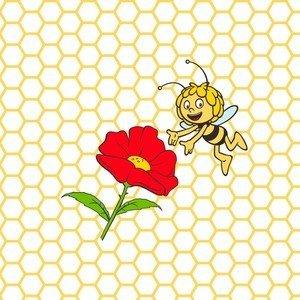 Bienenwachstuch 25x25 cm Biene Maja Nuts Innovations AG