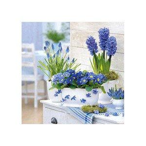 Servietten 33x33 cm Purple Spring Ambiente