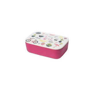 Lunchbox Classic Pretty Little Things chic mic
