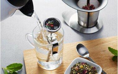 Küchenthermometer