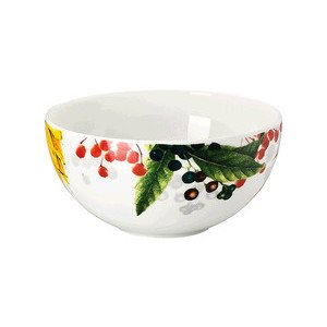 """Bowl 10 cm """"Brillance Les Fruits du Jardin"""" Rosenthal"""