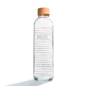 Glastrinkflasche 700 ml Water is Life Carry