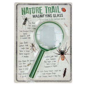 Lupe Nature Trail Rex International